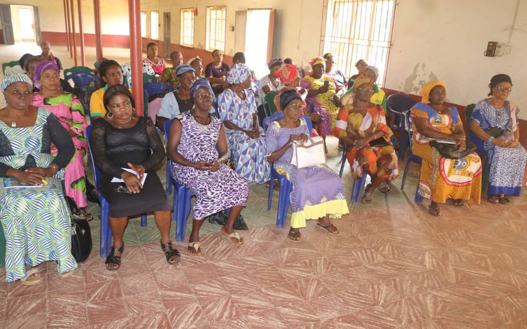 CSAAE TAKES ITS WOMEN ECONOMIC INCLUSION AND EMPOWERMENT DRIVE TO CWO, MOUNT CARMEL PARISH, EMEKUKU